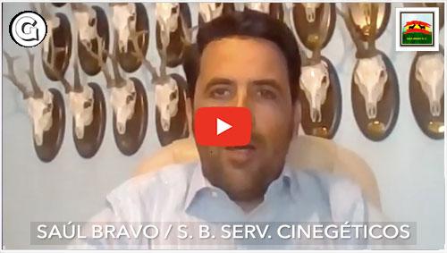 Entrevista a Saúl Bravo