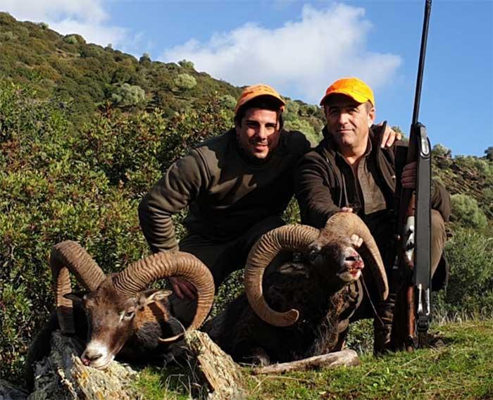 Resultado Montería Cañadillas 2 2019 Iberian Hunting