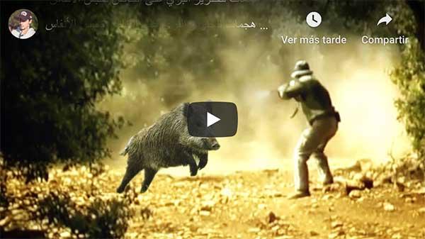 Vídeos impactantes de Jabaíes