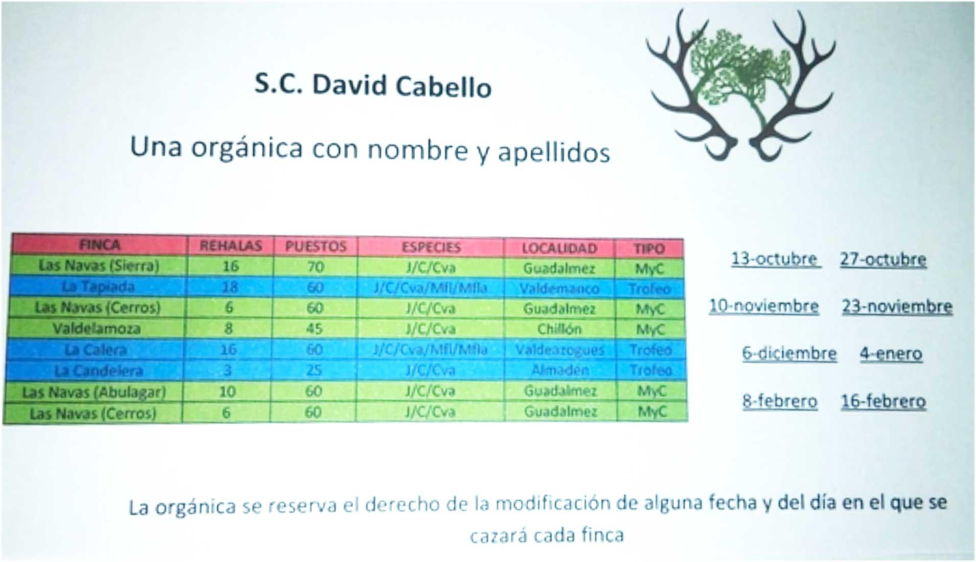 Programa Monterías David Cabello S C
